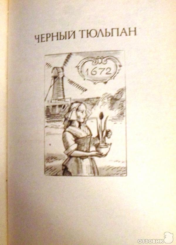 Черный тюльпан книга