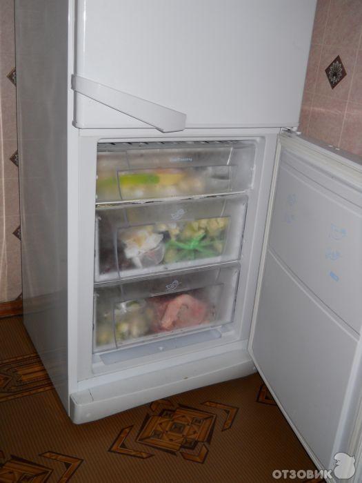 Холодильник Indesit SB 185, купить Холодильник Indesit SB 185 в Санкт-Петербурге - Холодильники - Холодильники с нижней морозилкой - Вмагазине.ру