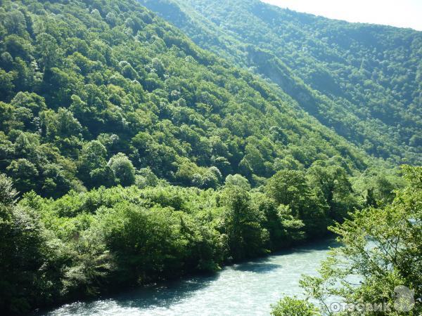 Абхазия новый афон отзывы отдыхающих 2016