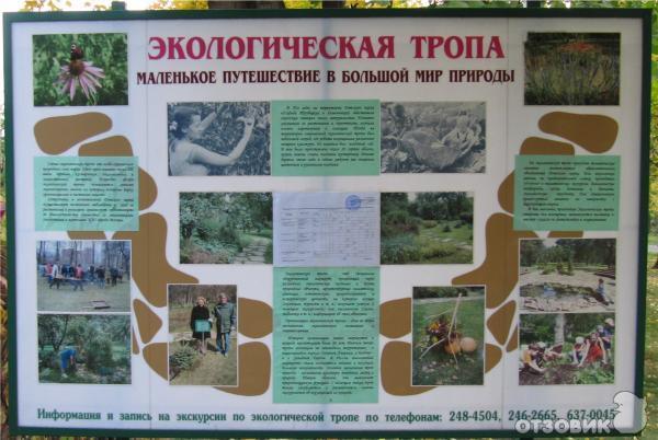 Проект: « Экологические тропы