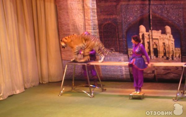 "Отзыв: Театр  ""Уголок дедушки Дурова "" (Россия, Москва) - Праздник для ребенка."