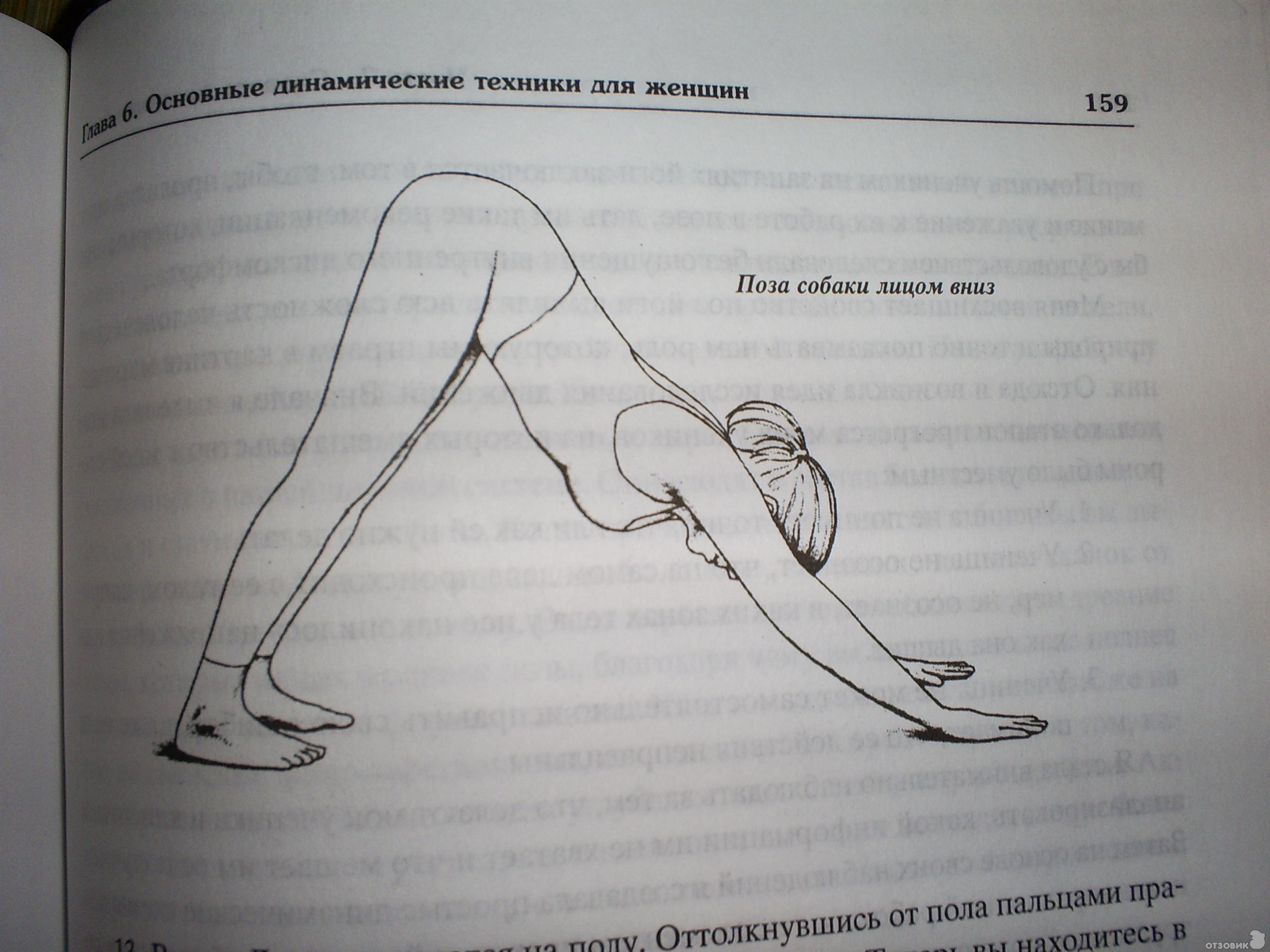 Шивананда свами золотая книга йоги скачать