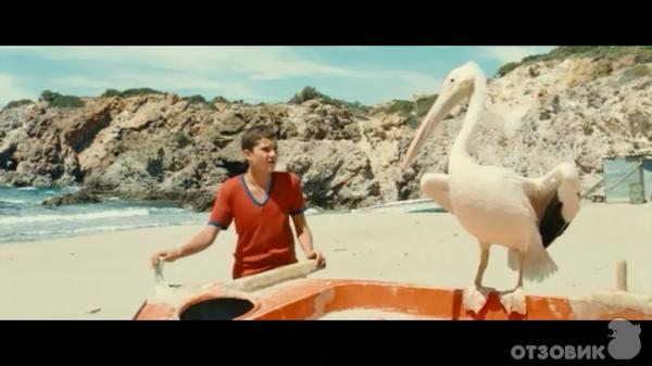 пеликан фильм скачать торрент - фото 10