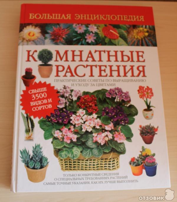 энциклопедия комнатных цветов с фото: