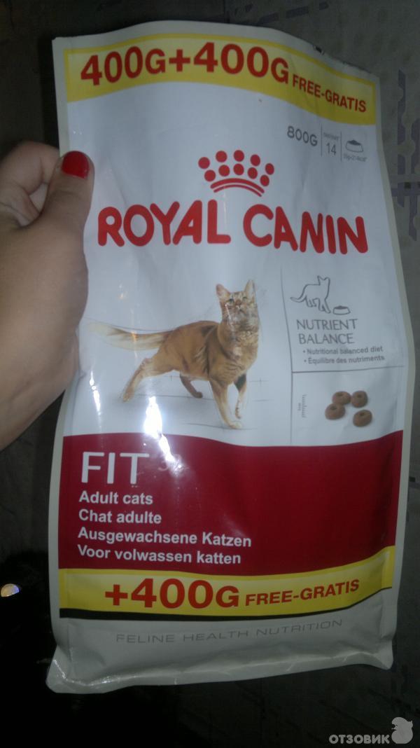 Кормим корм royal canin