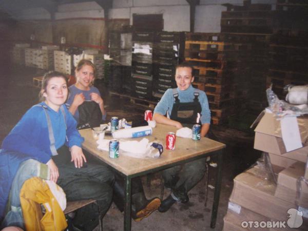 Работа в дании на стройке