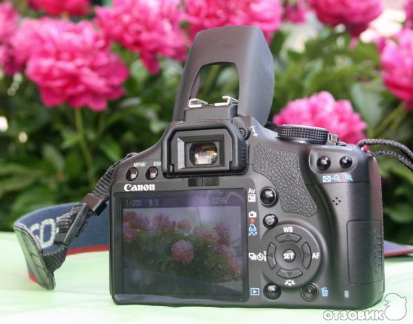 Canon efs 18135mm f3556 is stm lens review