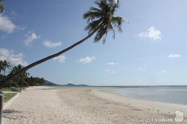 Как добраться до острова самуи в тайланде