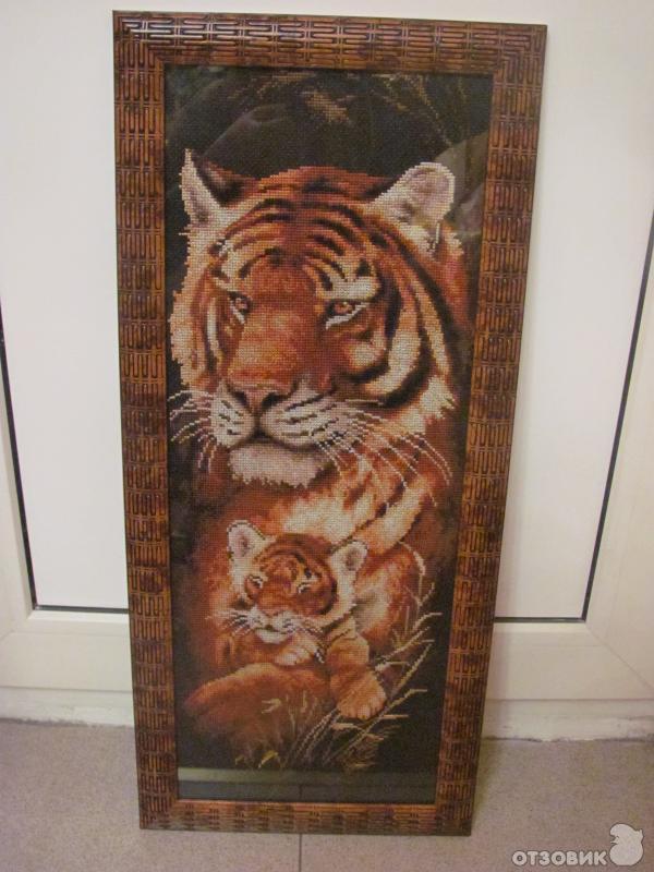 тигрица с тигренком.