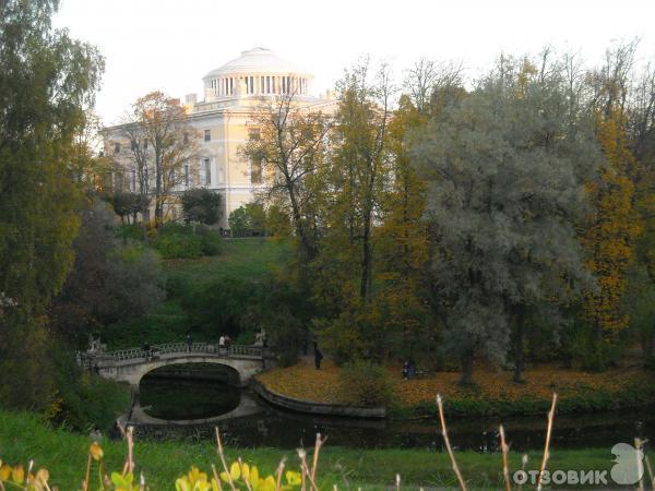 Сильвия санкт на природе фото 108-753