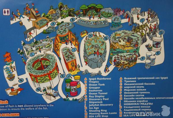 Санкт-петербургский океанариум, самый большой океанариум на северо-западе россии.
