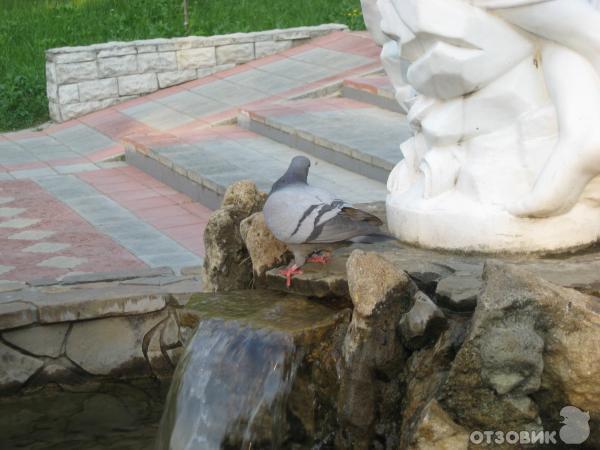 Отзыв Отдых в г. Горячий ключ (Россия, Краснодарский край