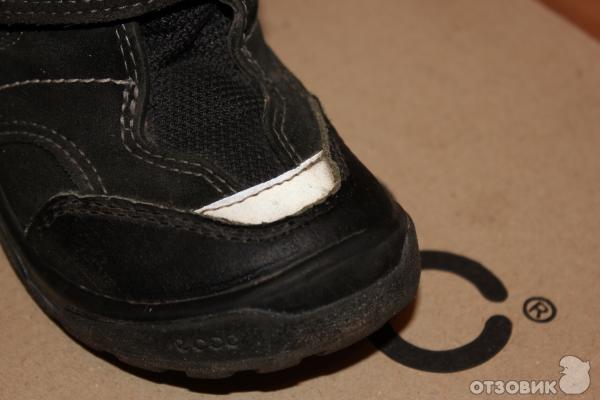 Где дешевле купить обувь ECCO? — Форум Taker im