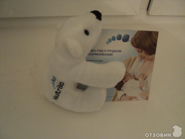 Нутрилон медведь в подарок 5